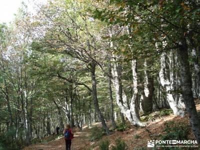 Montaña palentina;tienda senderismo madrid tiendas de alpinismo en madrid parques naturales de la r